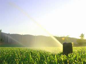 our Sun City West sprinkler repair team has installed and maintained this irrigation system